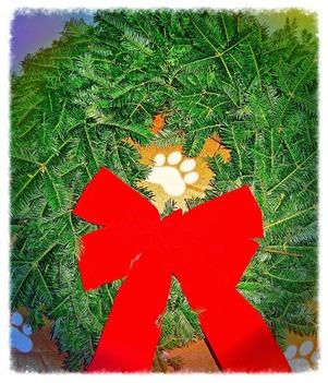 paw wreath