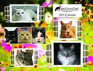 tlc calendar cover 2015